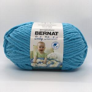 Sarcelle Bleu-4734